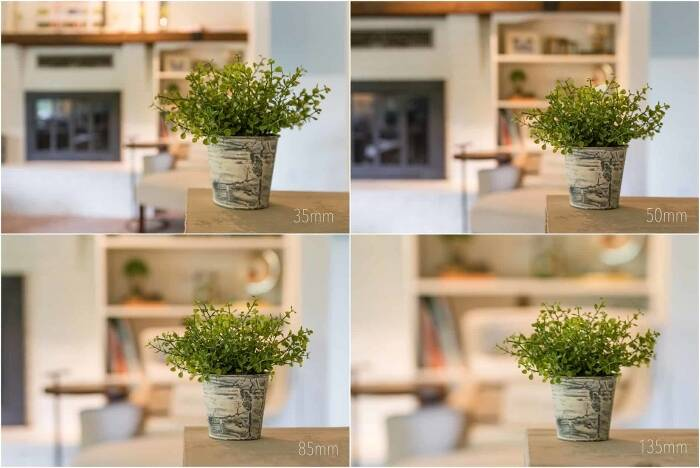 Depth of Field, Bokeh and Compression: What's the Difference?