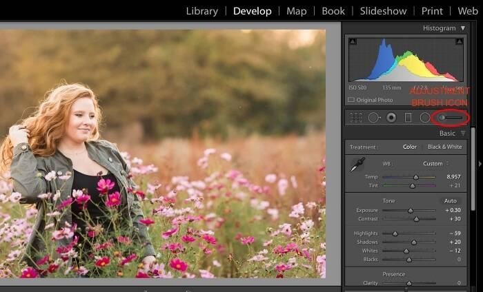 Simple Tips for Using the Lightroom Adjustment Brush Tool