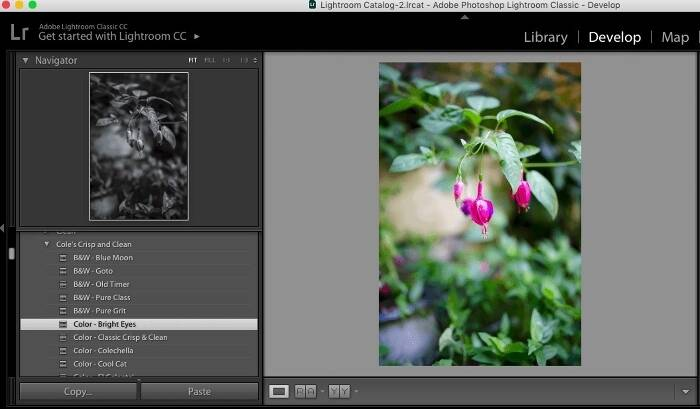 How to Use Lightroom: Quick Tips and Tricks for Beginners