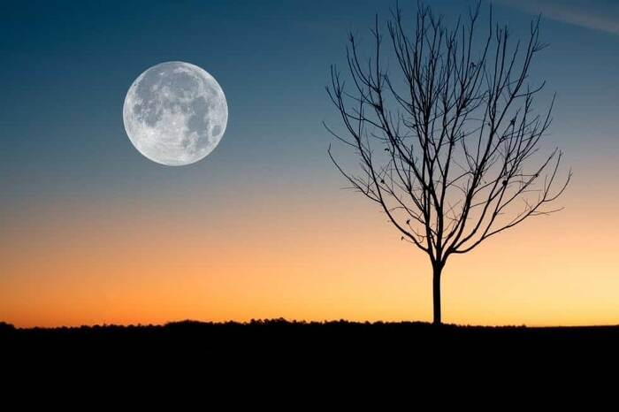 Moon Photography: How to Easily Capture the Perfect Shot