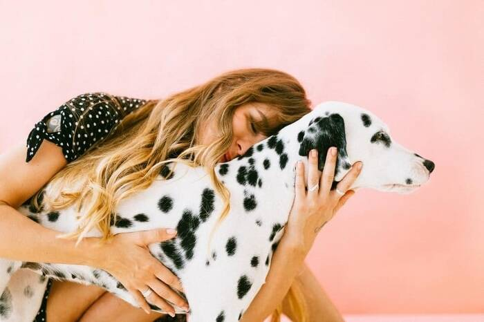 Dog Photography Tips for Every Animal Lover