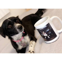 custom photo mug review
