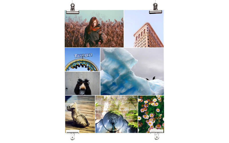 poster printing make your own custom photo posters collage com